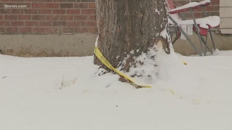 6-year-old boy shot in Denver