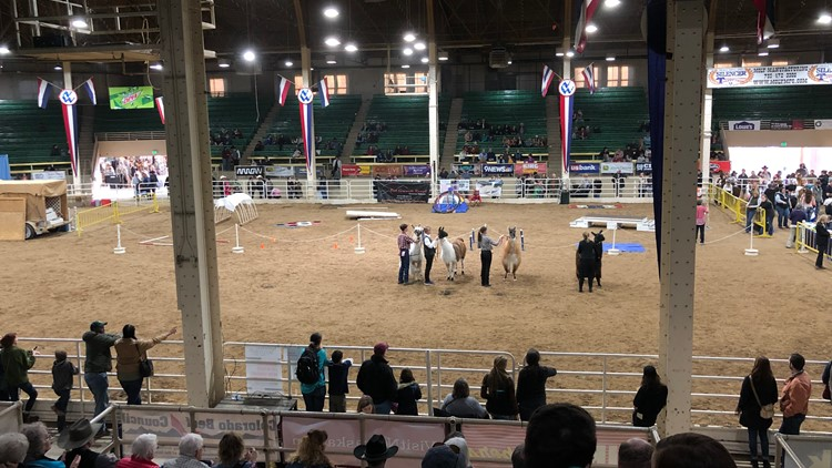 National Western Stock Show stadium arena