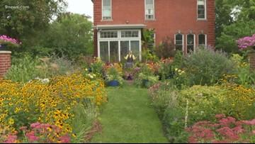 Proctor's Garden: Heirloom plants return to the garden