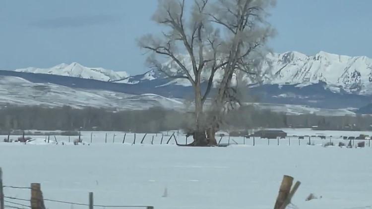 What makes Colorado winters unique?