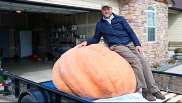 Wyoming man grows 1,491-pound pumpkin, breaks state record