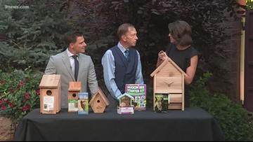 Proctor's Garden: Giving birds, bees and bats a home in your garden