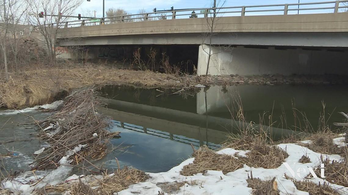 Same dam problem, different year: Beavers still creating flooding on Cherry Creek Trail