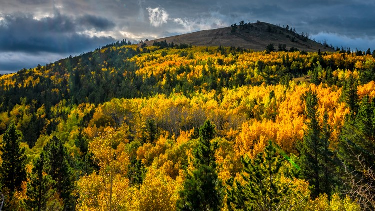 Share your fall color photos with 9NEWS