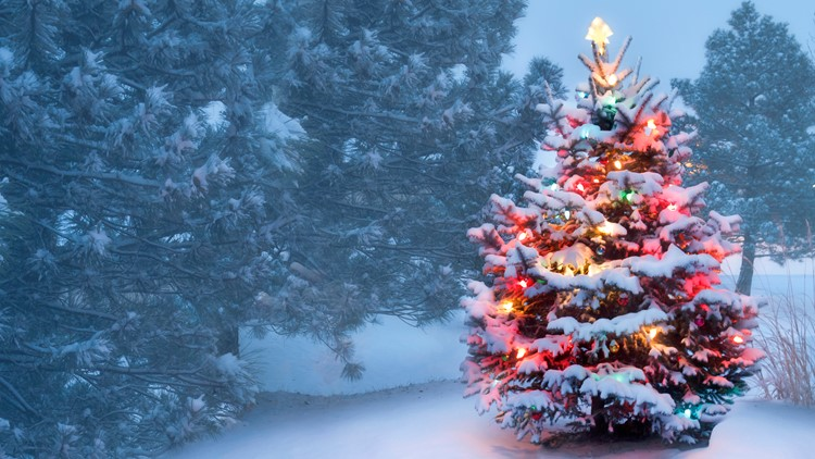 This decorated outdoor snow covered Christmas Tree glows brightly on this foggy Christmas morning snow holidays