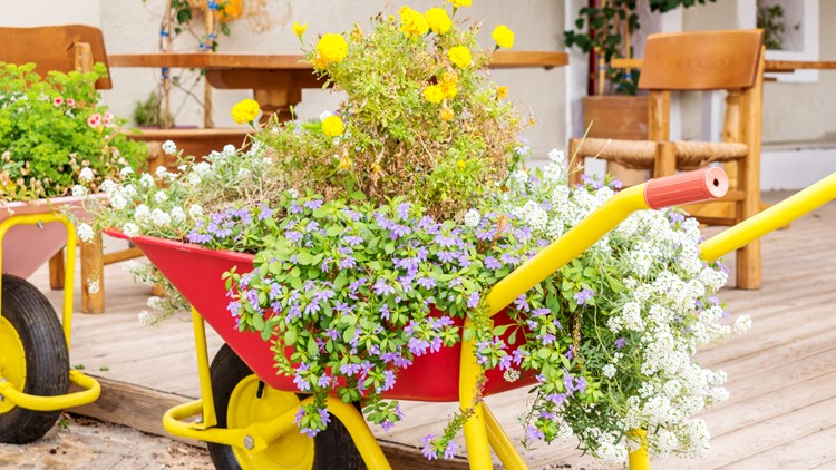 Quirky and fun gardening projects to try