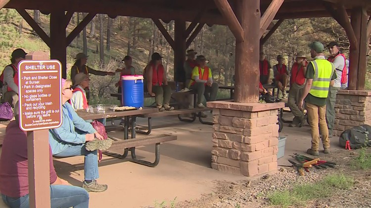 Boulder County, volunteers, work to remove invasive weed from Calwood Fire burn scar