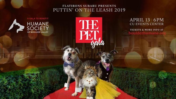 Puttin' On The Leash: The Pet Gala