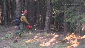 Why was the prescribed burn that started the Elk Fire allowed during dry conditions?