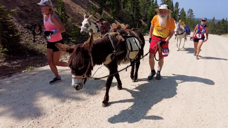 Colorado continues its tradition of racing alongside burros