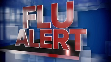 This Is What You Should Expect From This Year's Flu Season