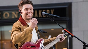 One Direction star Niall Horan announces Fiddler's Green concert