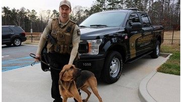 Georgia K-9 officer may have died from toxic algae, sheriff says